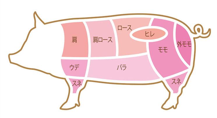 お肉の部位